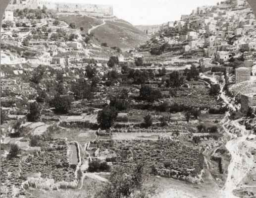 [Photo showing general area of the king's gardens cultivated with many gardens by the villagers of Silwan (top right). The mountains in the top of the picture are Mount Ophel (left), Mount Moriah (center), and the Mount of Corruption (right).]